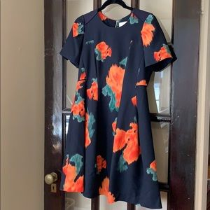 Anthropologie McGinn Poppy Palette floral dress